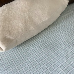 Export Day Single Original Single Cotton Single Bed Sheet (Light Green Plaid)