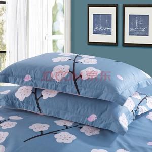 艾薇 枕套家纺 全棉枕套 40支纯棉斜纹印花枕头套 一对装 漫花语梦 48*74cm